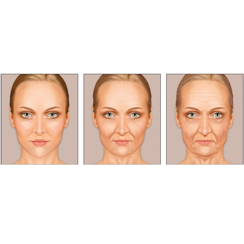 сузуки фото возрастных изменений лица по возрастам цветки